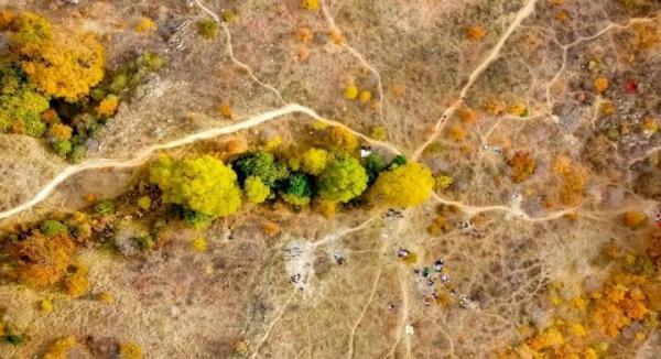 جنگل های بلوط خراسان شمالی، جاذبه ای بکر برای گردشگران