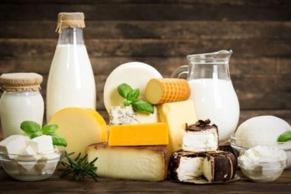 تامین 70درصدی استارتر لبنی مناسب ذائقه ایرانی توسط محققان کشور