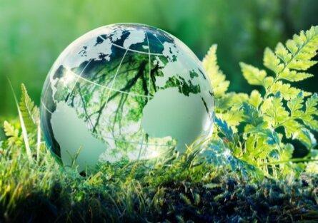 فعال شدن شبکه ایمنی و محیط زیست نانو در کشور